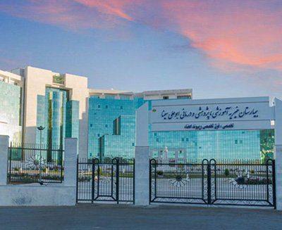 Abualisina Hospital
